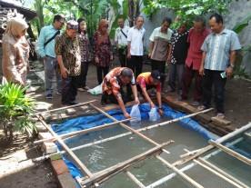 Ribuan Lele Cendol Untuk Kelompok Tani Makmur Jaya